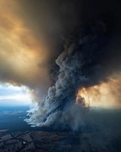 澳洲球星发推特希望人们关注火情